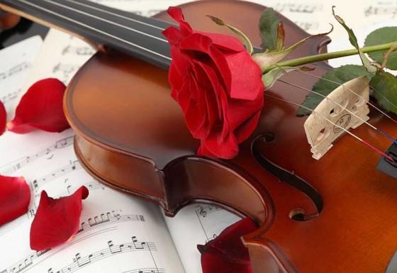 musica e animazione matrimoni marche
